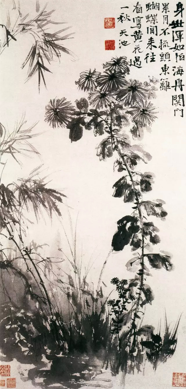 徐渭 菊竹 纸本墨笔 90.4×44.4cm 辽宁省博物馆藏