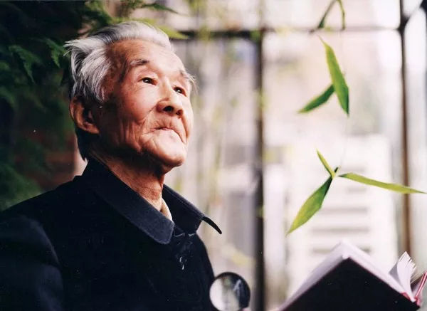 中国人爱字,是民族的天性